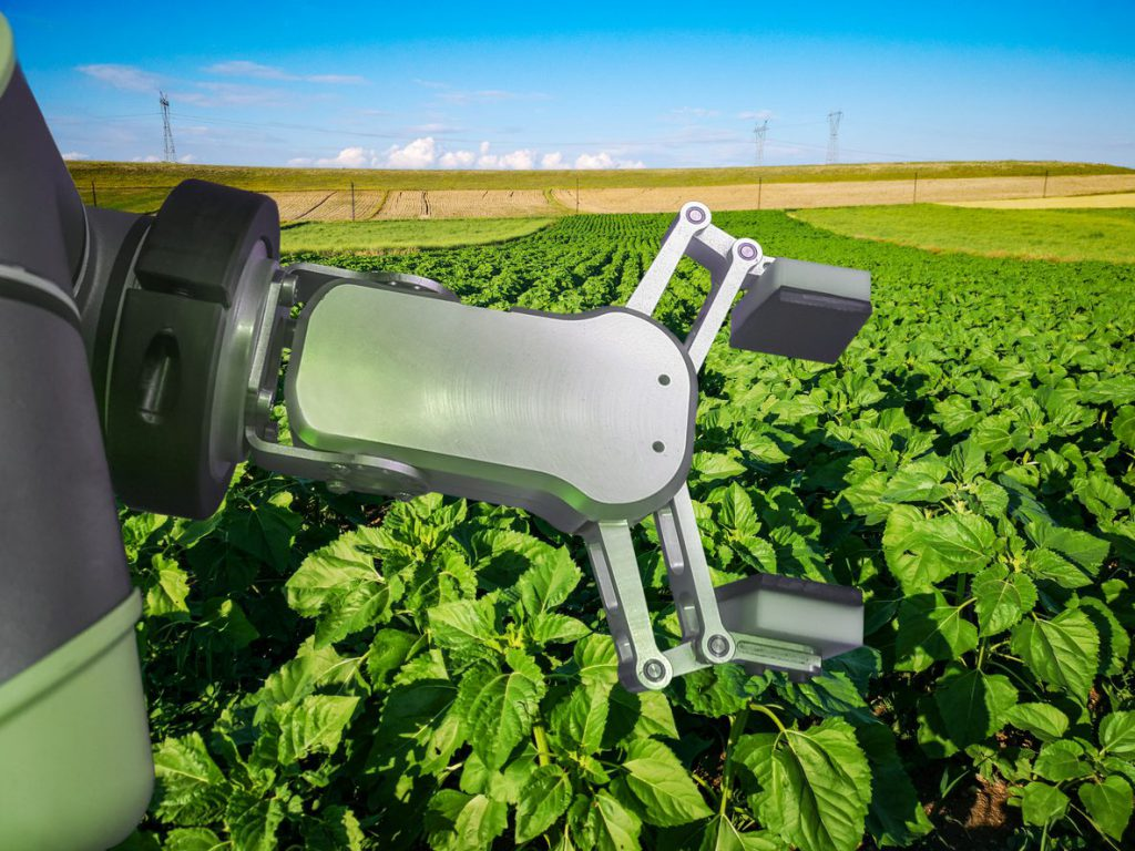 Whole Foods Sells Organic Produce Grown by Robots